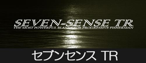 SEVEN SENSE